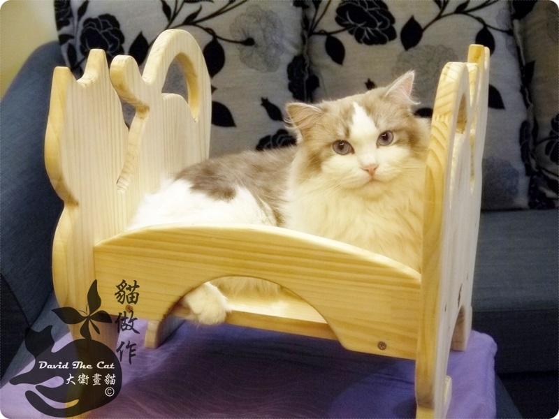 貓床角度07