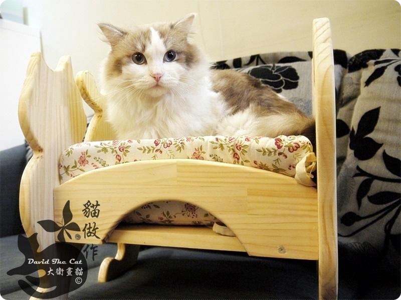 貓床角度09